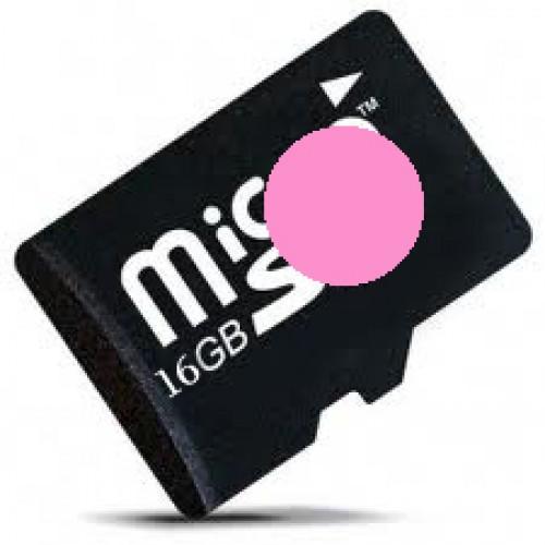 16GB Micro SD Module XU4/HC1 Linux [77431]